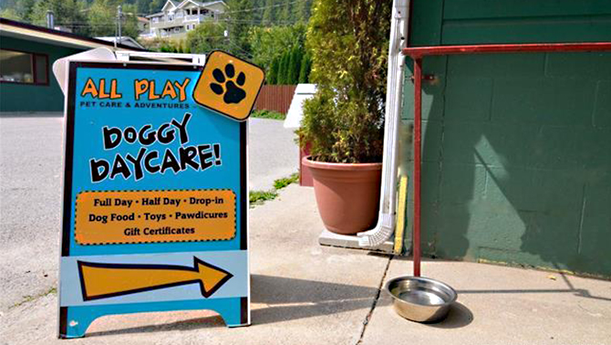 Sandwich board sign advertising Doggy Daycare