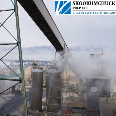 "Taken on a cold winter day, this photo shows the wood chip piles in the background. In the centre, we see chlorine dioxide storage towers. Above these is the inclined ""long belt,"" which transports screened wood chips to the chip bin."