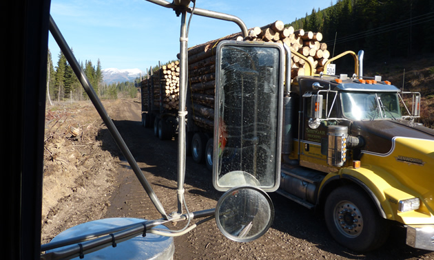 A loaded logging truck passing an empty one on a dirt road.