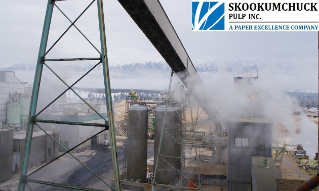 """Taken on a cold winter day, this photo shows the wood chip piles in the background. In the centre, we see chlorine dioxide storage towers. Above these is the inclined """"long belt,"""" which transports screened wood chips to the chip bin."""