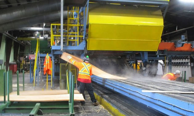 Worker at ATCO Wood Products, working in saw mill.