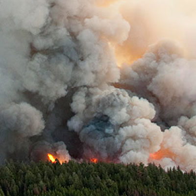 Picture of wildfire.