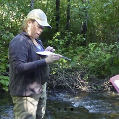 Scientist conducting water quality study in woodland stream.