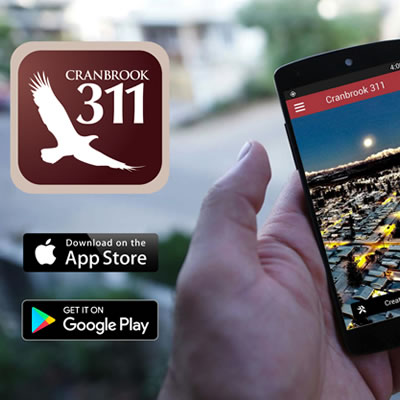 A graphic of the City of Cranbrook's new 311 app.