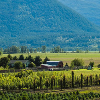 A farm and its produce makes a beautiful green panorama against blue mountains and a cloudless sky.