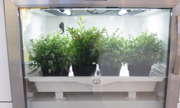 The urban cultivator was created by two Kelowna men and featured on CBC's Dragon's Den