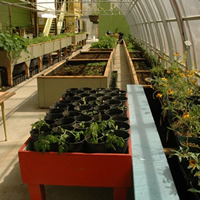 Photo of the inside of Invermere's Groundswell Community Greenhouse