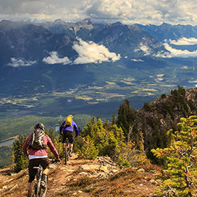Scenic view of mountain bikers.