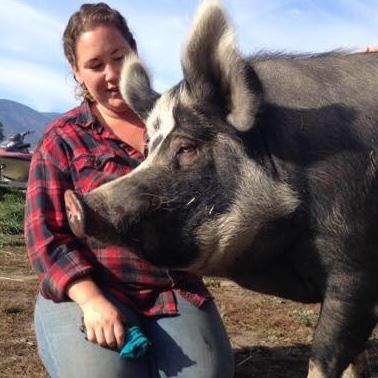 Jessica Piccinin with her 408 kilogram (900 lb) pig, Annie.
