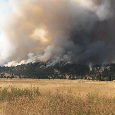 In September 2017, the ?aq?am community experienced a wildfire. It will now be reducing fuel in high-risk areas with support from a wildfire mitigation grant from Columbia Basin Trust.