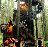 A tree house with a spiral staircase, one of the many attractions at the Enchanted Forest.