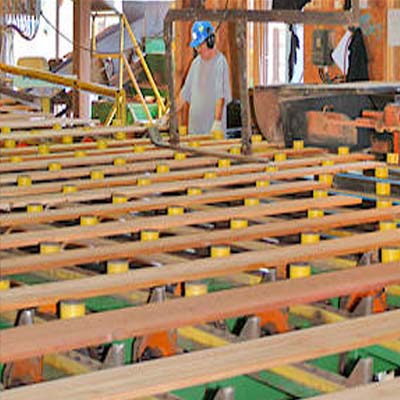Picture of worker in woodworking shop