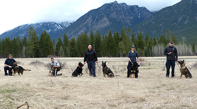 RCMP officers with their police service dogs.