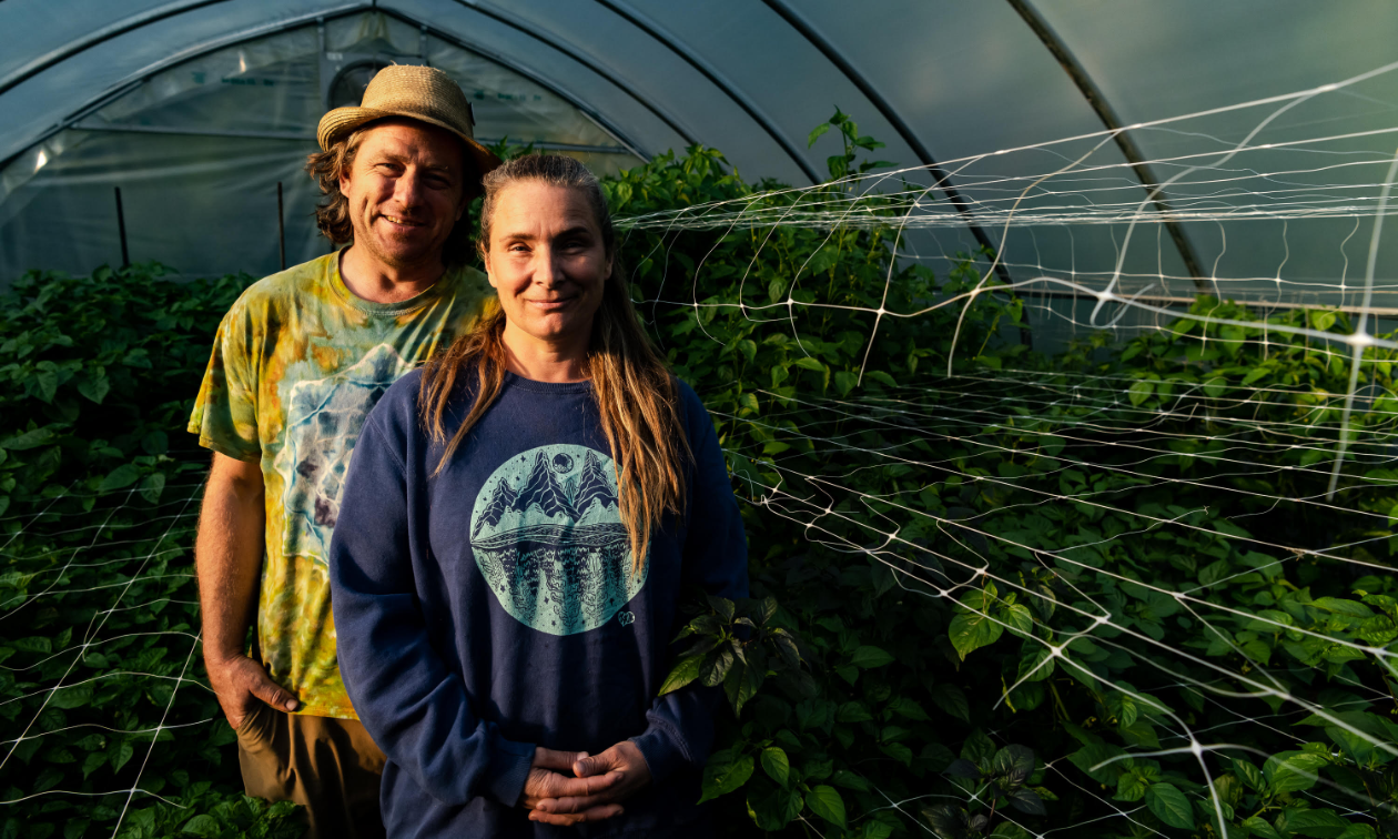 Sarah Harper and Stu Smith stand inside a greenhouse together.