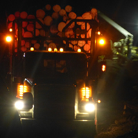 A logging truck getting loaded in the dark.