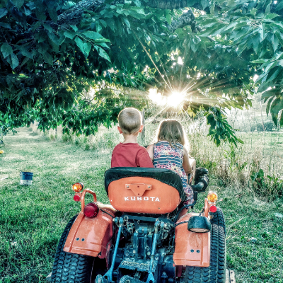 Two children sit on a small orange tractor with sunshine piercing through a tree.