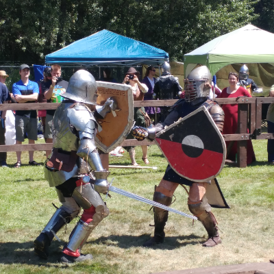Two combatants duke it out in the fenced-in battle arena.