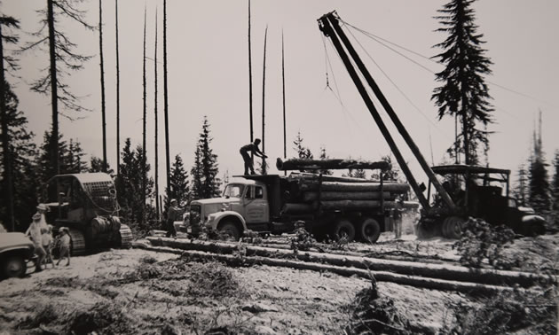 Old logging equipment working in the bush.