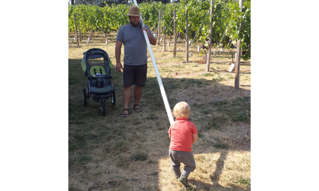 Remi and William Cardinal carry supplies across their vineyard.