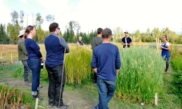 Kootenay Society for Sustainable Living in Meadowbrook hosted a farm tour and discussion on biointensive growing.