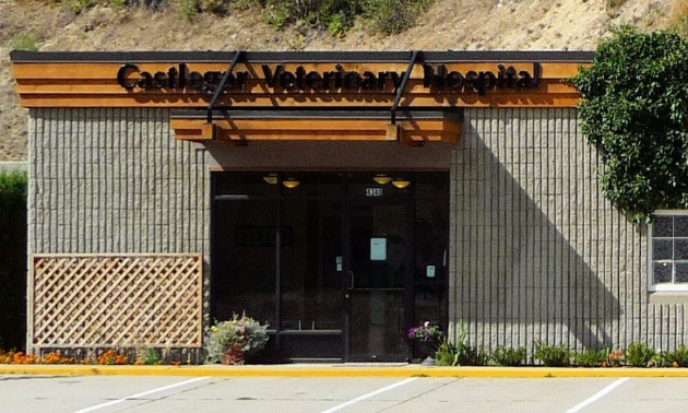 The front of Castlegar Veterinary Hospital