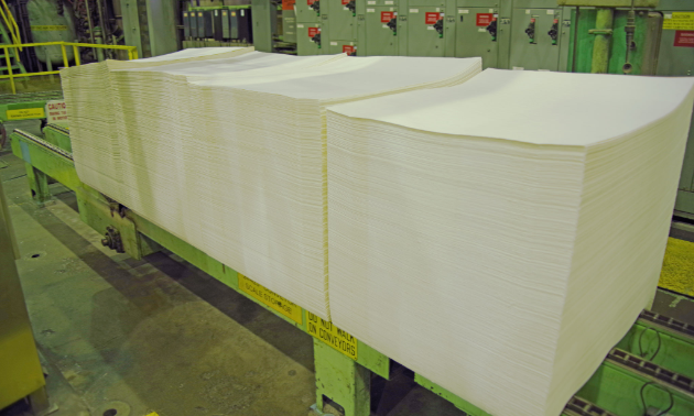Bales of pulp consist of stacked pulp sheets. The bales undergo significant compression through the bale press before being wrapped in two sheets of kraft pulp and tied with galvanized wire. Each bale weighs approximately 245 kilograms.