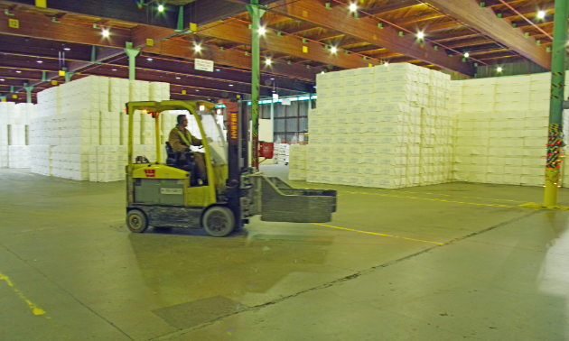 The final product, unitized bales of pulp, is shown stored in the warehouse. The pulp is loaded into rail cars and shipped directly to domestic customers or taken to port where they are loaded into cargo ships that transport them to overseas clients.