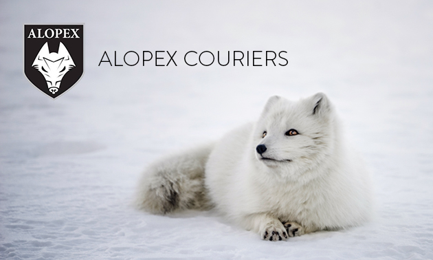 A white Arctic fox sits in the snow, with the Alopex logo in the top left corner of the photo.