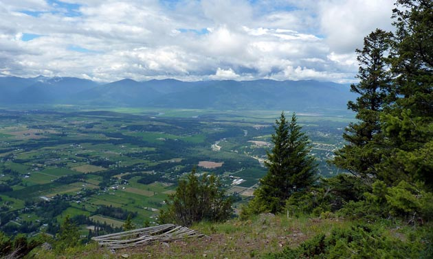 The Mt. Thompson trail system offers beautiful views like these. The Creston Valley Forest Corporation will be improving this network with support from Columbia Basin Trust's Trail Enhancement Grants.