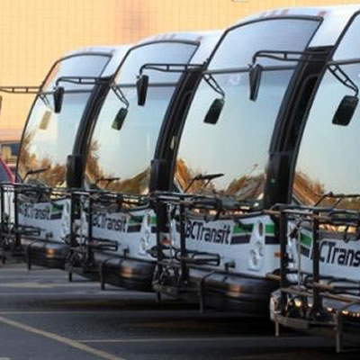 Line up of BC Transit buses.