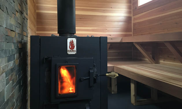 Wood stove in sauna.