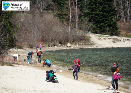 The volunteers of FOKLSS cleaning up the beach of Kootenay Lake