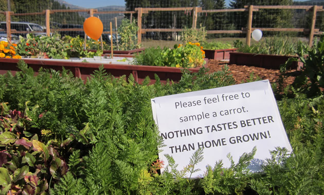 A sign in a garden bed reads,