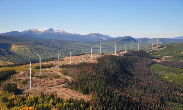 CEBC is BC's clean energy industry association that represents 135 members.