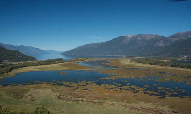 Six Mile Slough near Creston will provide better habitat for many species once it's restored with support from Columbia Basin Trust's Ecosystem Enhancement Program.