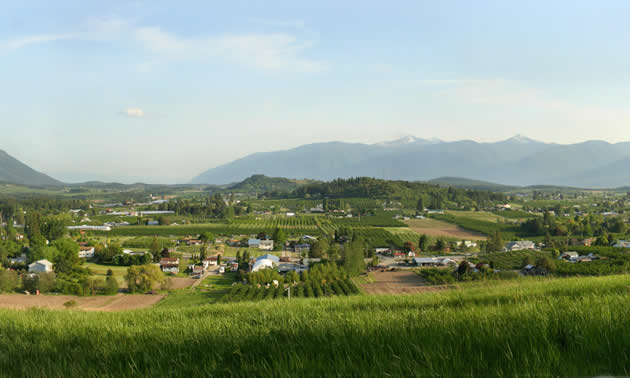 Scenic view of the Creston Valley.