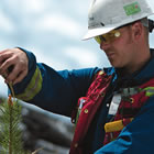 A man wearing a hard hat and safety vest outdoors measuring the top of a small coniferous tree