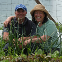 A couple kneel behind a raised bed full of lettuce and other greens. They're in a greenhouse and both wear sunhats.
