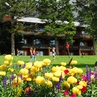 Flowers and lawn in foreground with Fairmont Hot Springs Resort Hotel in the background