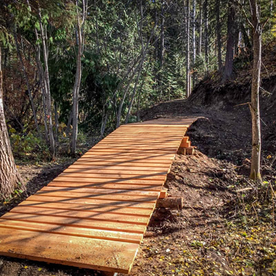 Fernie's Inclusive trail through the forest.