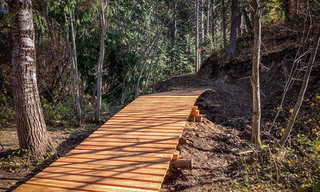 Fernie's Inclusive trail through the forest.