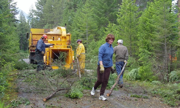 Rossland residents on trail, clearing out brush and trees.