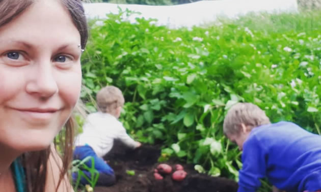 Two young boys are digging up potatoes with their hands and their mom is in front smiling.