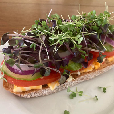 Sandwich topped with microgreens.