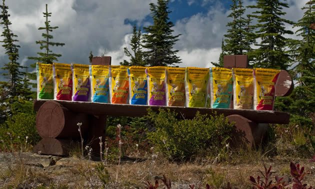 12 varieties of Pasta Fermentata are displayed on an outdoor bench