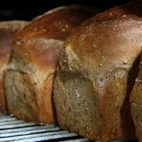 Loaves of crusty bread on a wire shelf