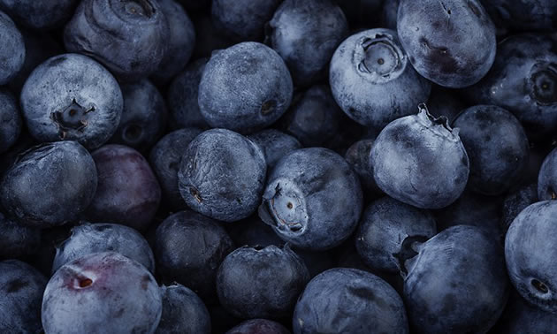 Close-up of ripe blueberries.