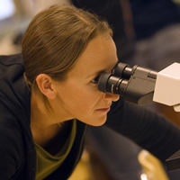 A science student at Selkirk College looks through a microscope.