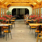 Golden timbers, floor-to ceiling windows and flowering plants make a beautiful dining area.