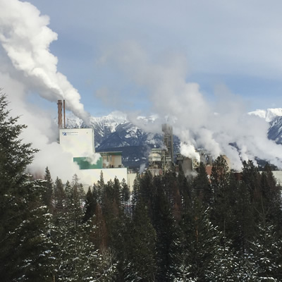 The Paper Excellence Skookumchuck Pulp Mill won Manufacturer of the Year.